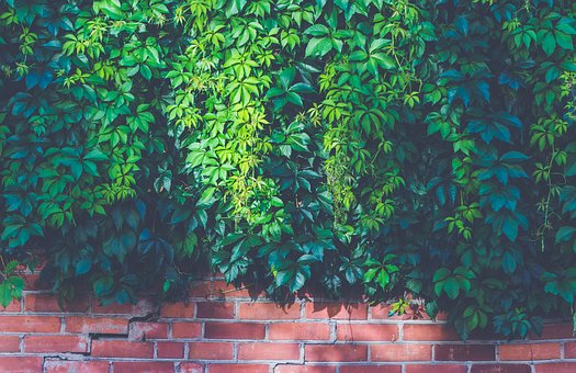 Benefits Of Installing Fences On Your Property